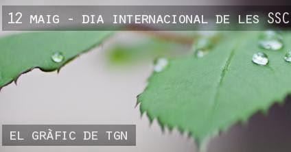 12 de Maig. Dia internacional de les SSC