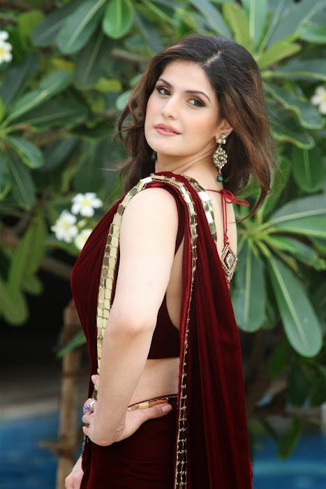 zarine khan glamorous in saree latest photos