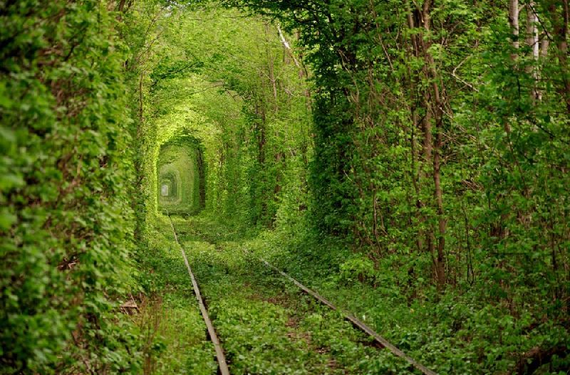 The most beautiful tunnels in the world
