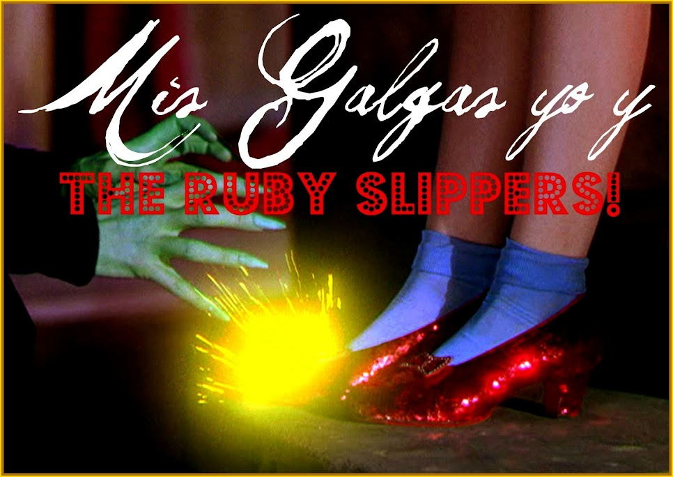 Mis galgas, yo y the ruby slippers