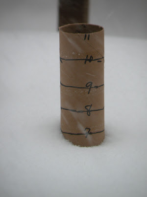 Paper towel tube snow ruler