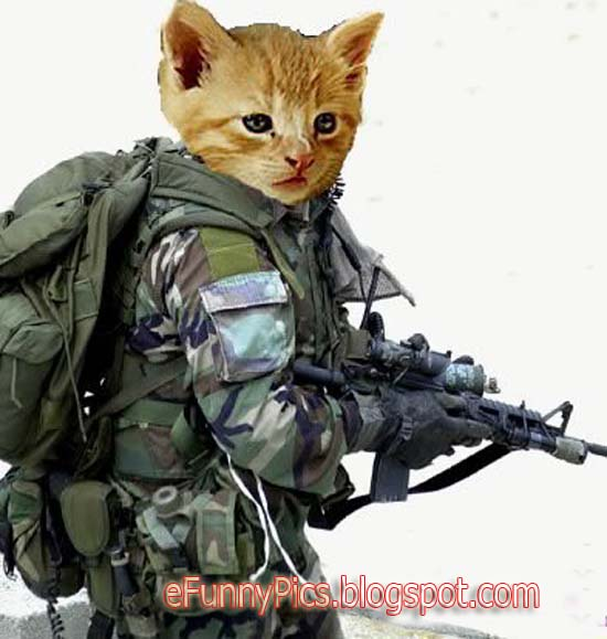 chat with military