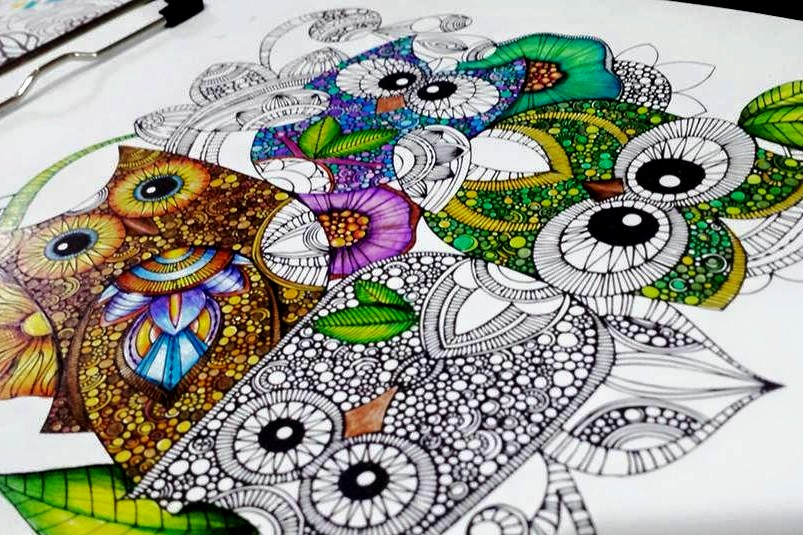 Kolorista Owl Coloring Book