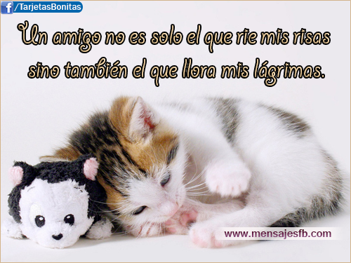 Mensajes de amistad - Mensajes para Amor | Postales tarjetas con ...
