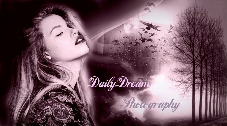 DailyDream Photography