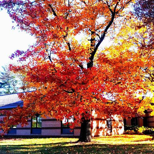 Fall in the Lehigh Valley   Taste As You Go