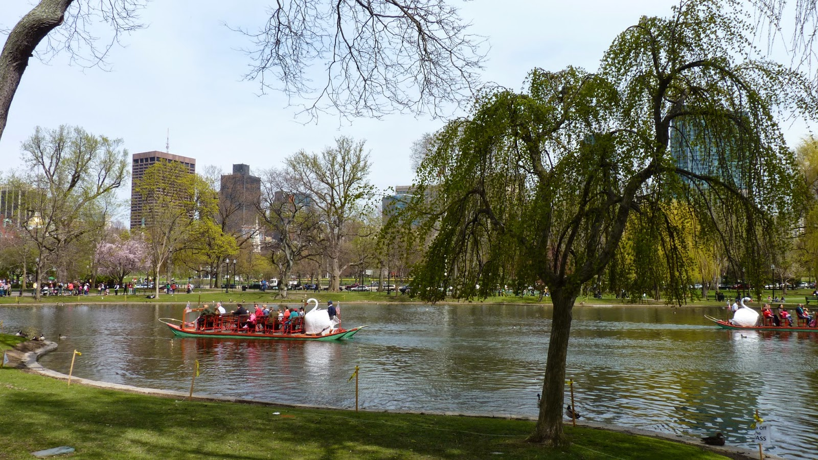 The Unpaved Road: Boston Public Gardens