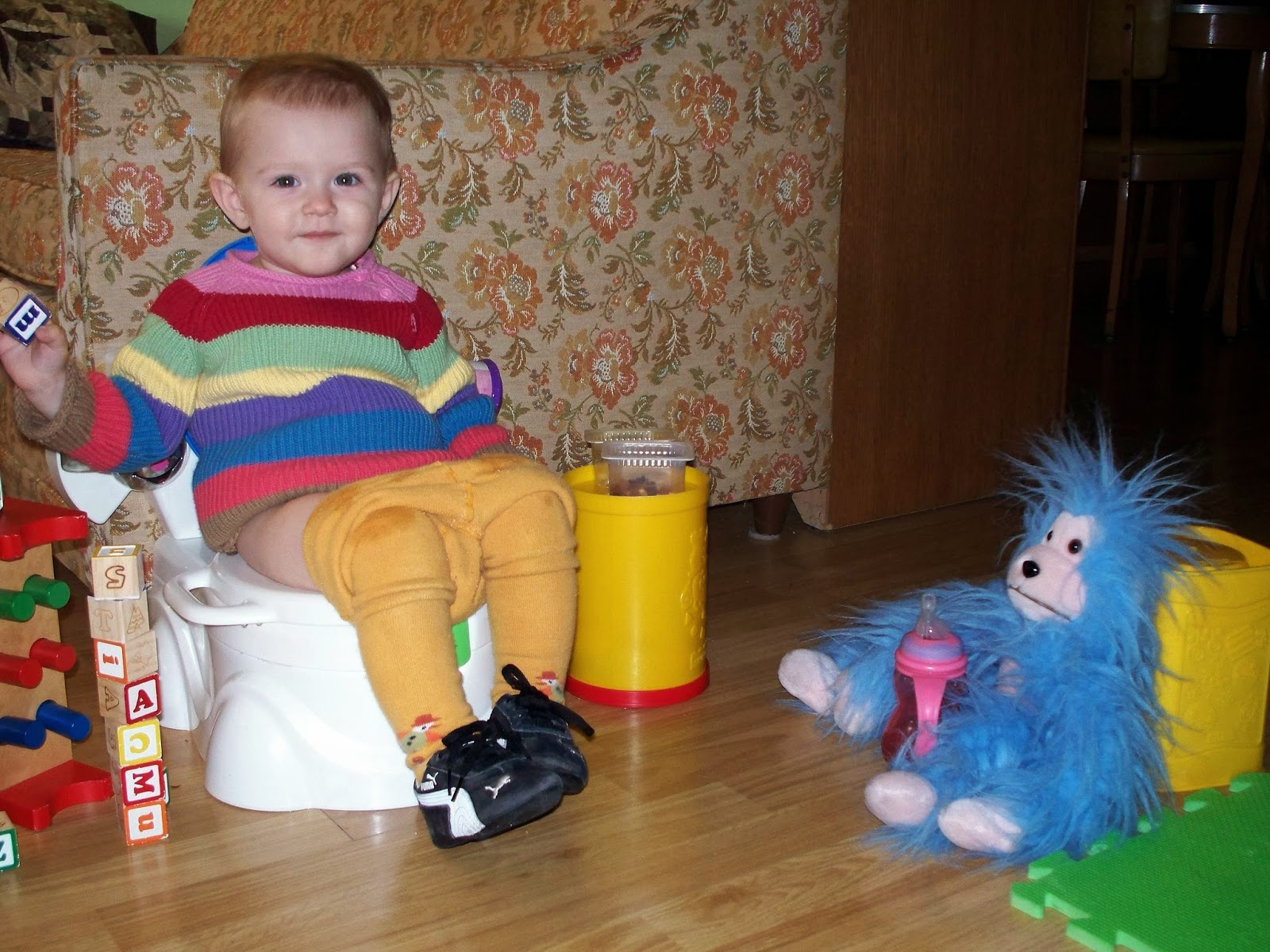 what's the oh crap potty schooling technique