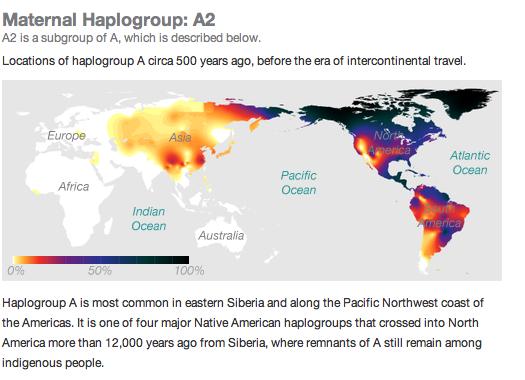 native american mitochondrial haplogroups
