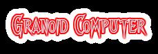 Granoid Computer