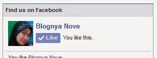 Cara Membuat FanPage Facebook Dan Memasangnya Di Blogspot