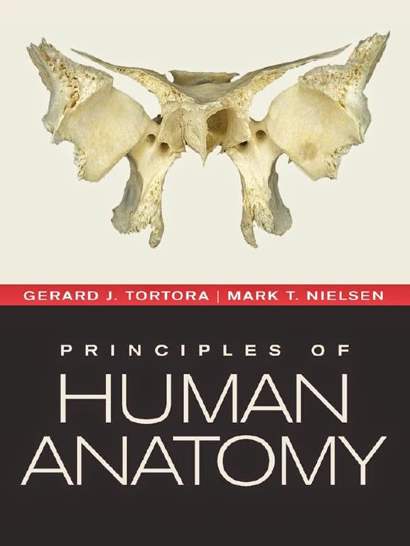 Principles of anatomy and physiology by tortora and derrickson, 13th ...