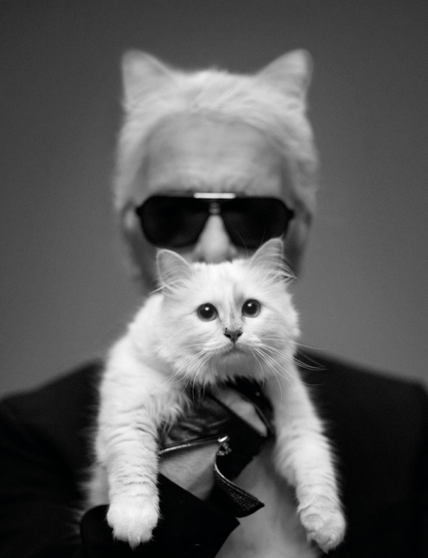 Fashion moments 2012: Choupette