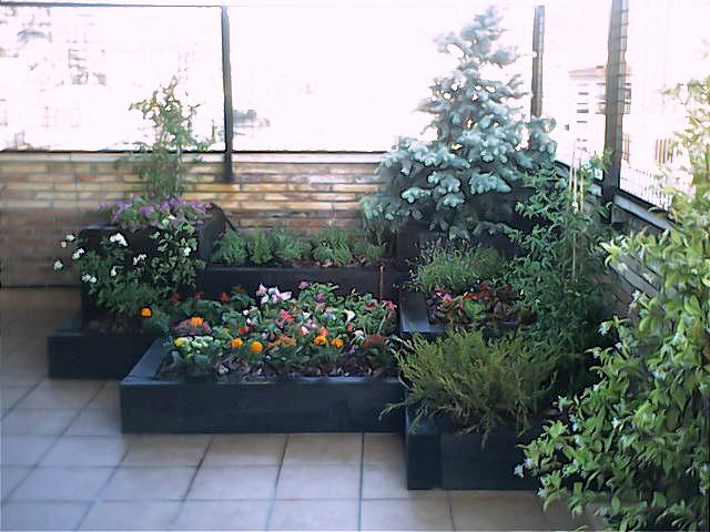 Jardineras de madera de pino a medida - Plantas para terrazas ...
