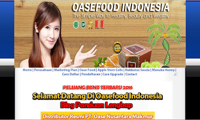jasa buat blog oase food network