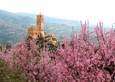El Castell de Penella. Cocentaina.