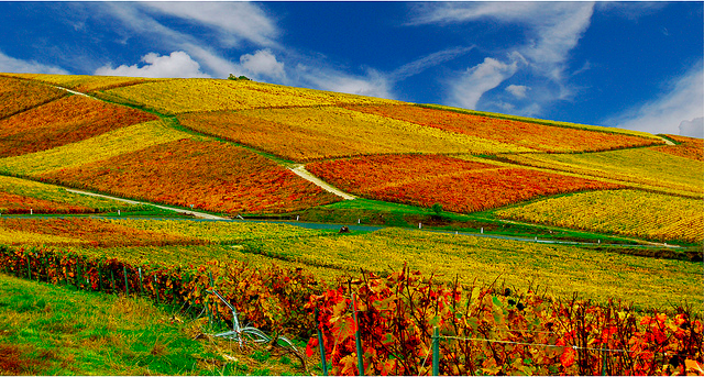 Top 10 most beautiful places in france the world travel for Chambre agriculture champagne ardenne