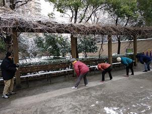 Enero 2018 Tai Chí nevado