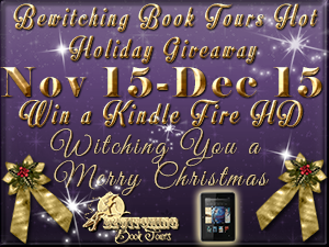 Enter to Win! Santa has a Kindle and Bag o' Books for You