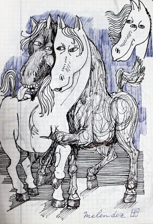 Amor de caballo