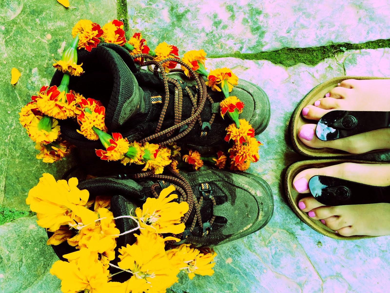 Wandeltocht Nepal