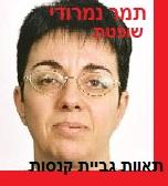 שופטת תמר נמרודי - בית משפט לעניינים מקומיים ירושלים - תחלואי תאוות גביית קנסות