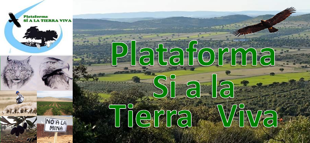 Plataforma Si a la Tierra Viva (Blog oficial)