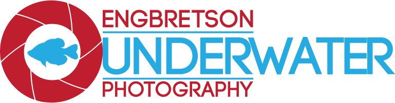 Engbretson Underwater Photography