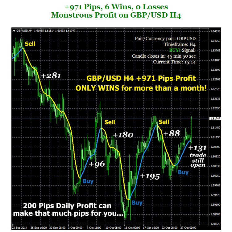 Forex profit monster daily