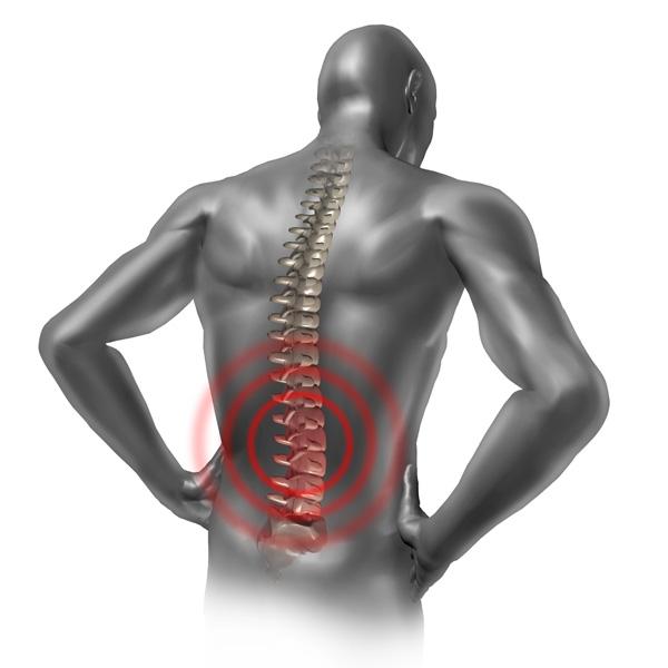 Saúde e harmonia para sua coluna vertebral, para suas articulações e seu corpo