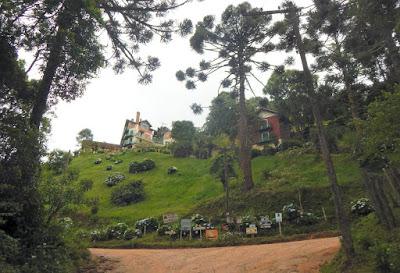 Monte Verde tem cerca de 280 pousadas, espalhadas por estradas vicinais salpicadas de araucárias.
