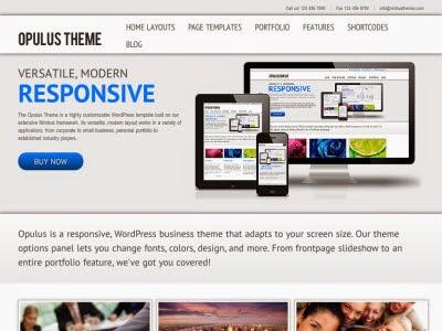 Opulus WordPress Theme