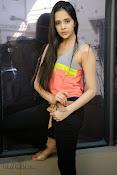 Abha Singhal latest photos at Dil Diwana press meet-thumbnail-12