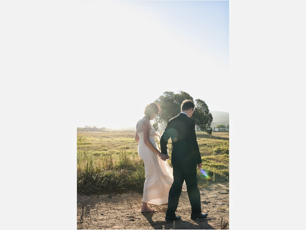 DK Photography last+slide-62 Ruth & Ray's Wedding in Bon Amis @ Bloemendal, Durbanville  Cape Town Wedding photographer