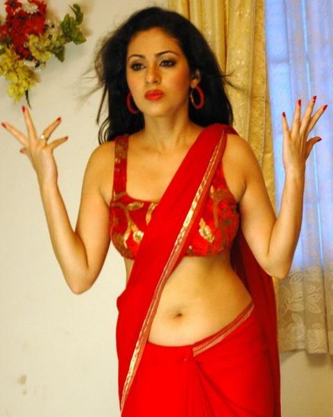 Indian Actress Hot Masala Photos: Sada Hot Navel Photos in Saree