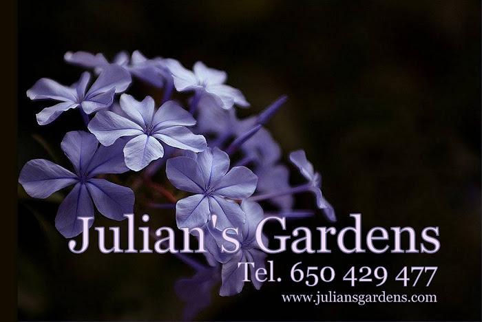 JULIAN'S GARDENS