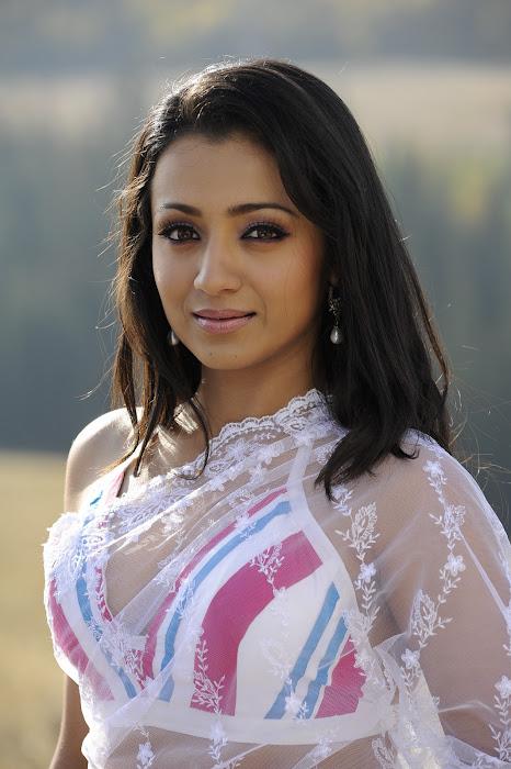 trisha in transparent saree hot photoshoot