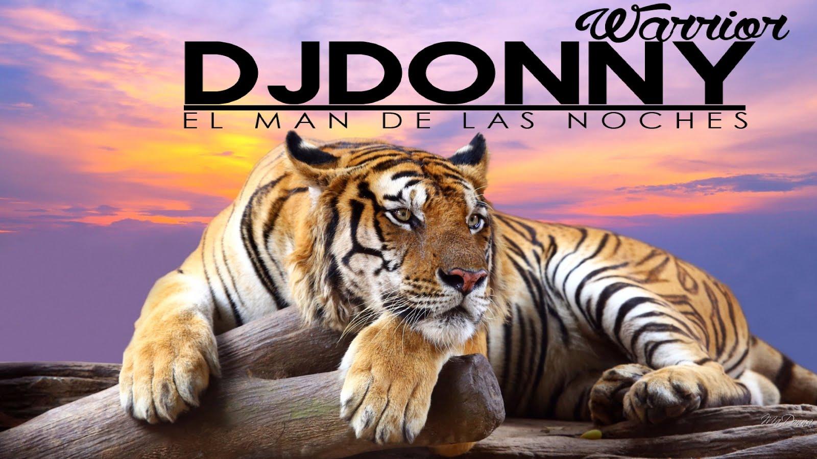 instagram tigre