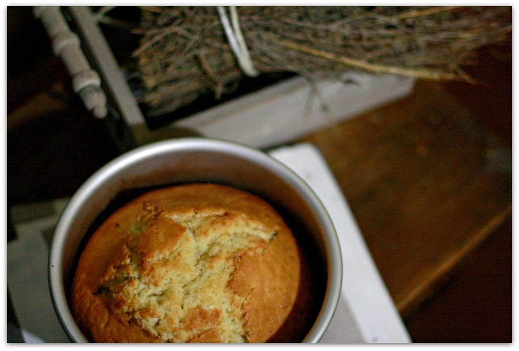 madeira-sponge-cake