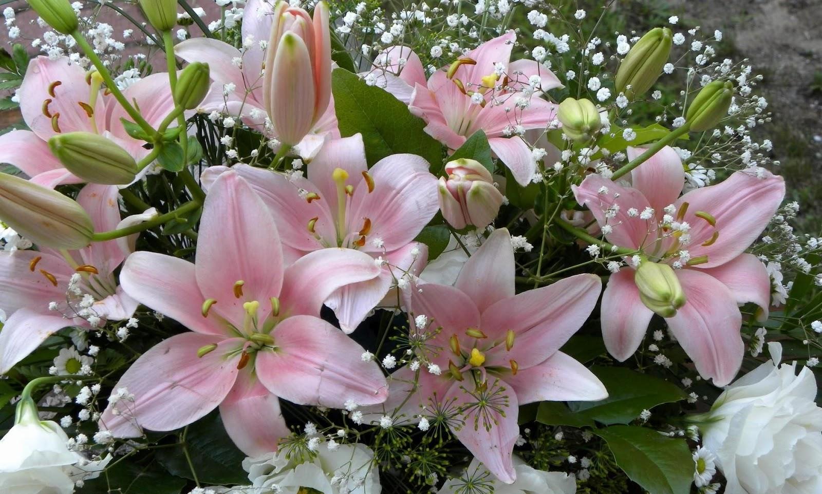 С днем рождения цветы лилии картинки