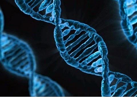 Descoberto um microrganismo alienígena que teria sido enviado ao nosso planeta para se reproduzir na Terra