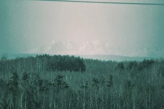 Ośnieżone Tatry, widok z Kosów