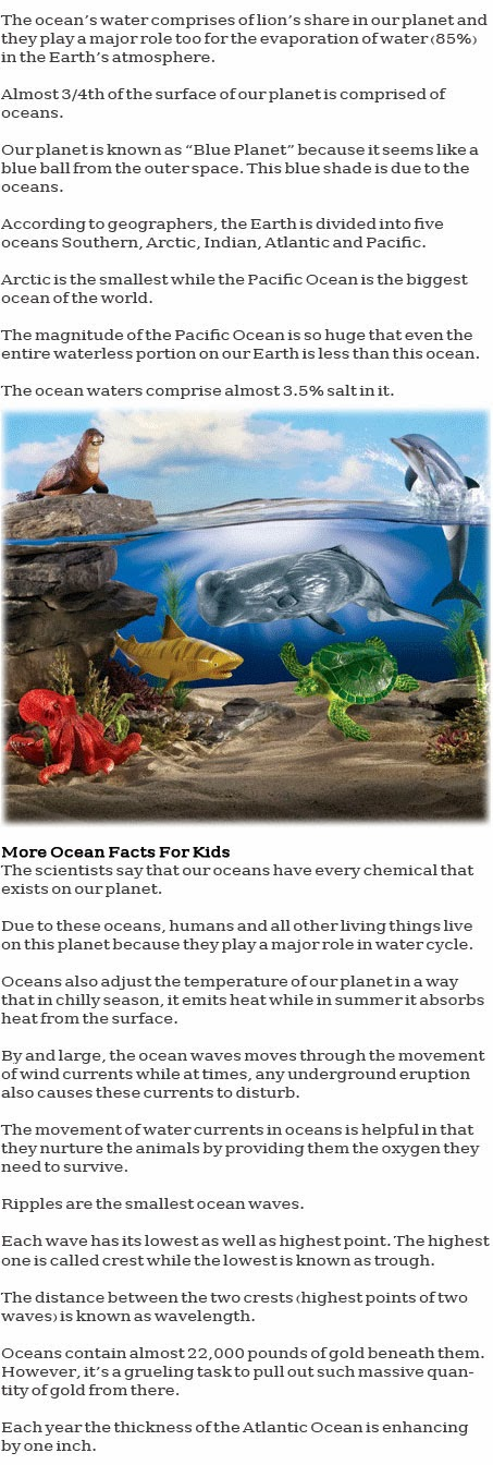 Ocean information for kids
