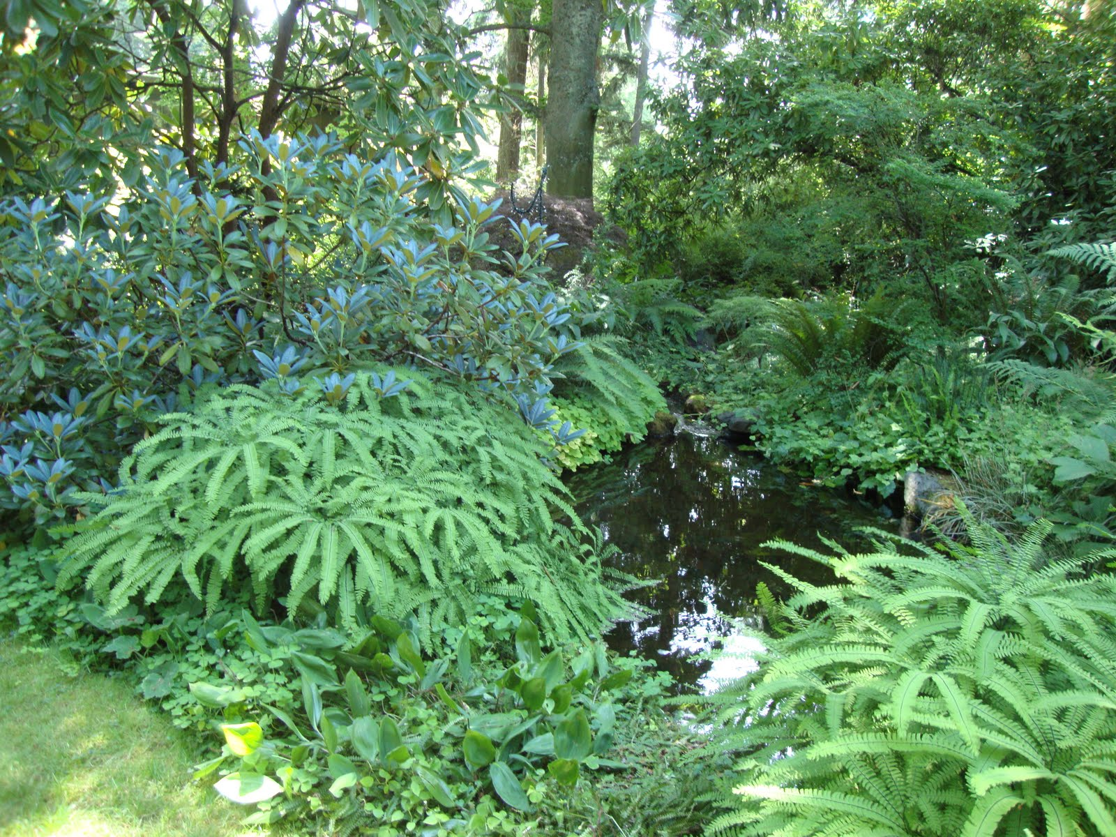 Garden Ideas II on Pinterest Shade Garden Cottage