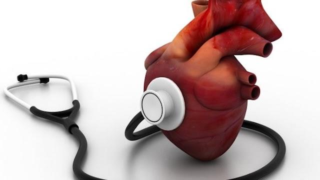 Gambar Jantung - Mengenal Jantung, bagian-bagian dan fungsinya pada tubuh manusia.