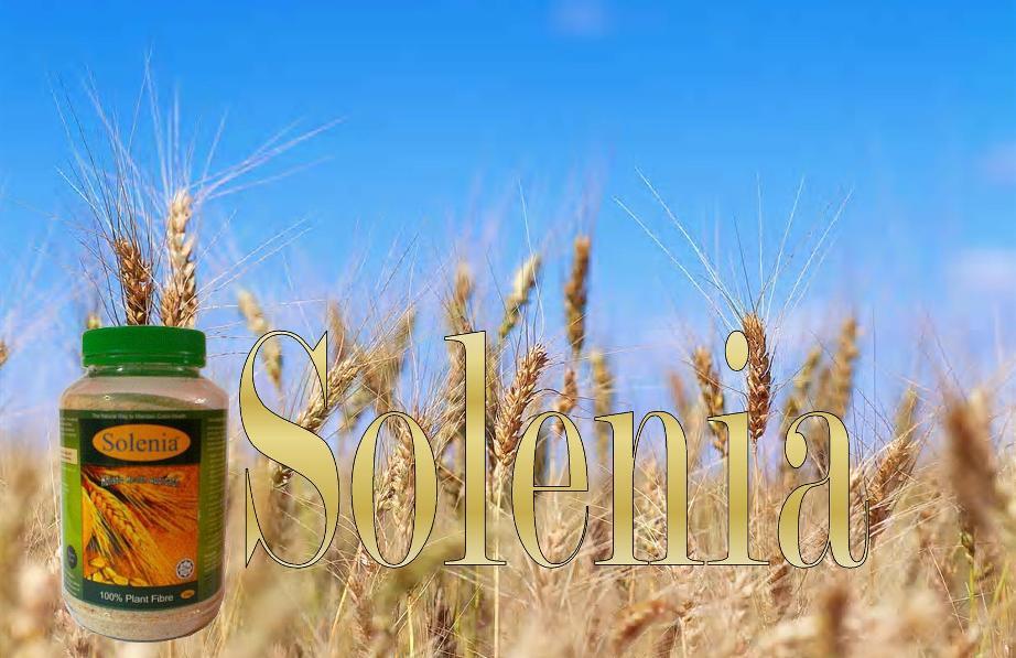 Solenia - herba untuk semua