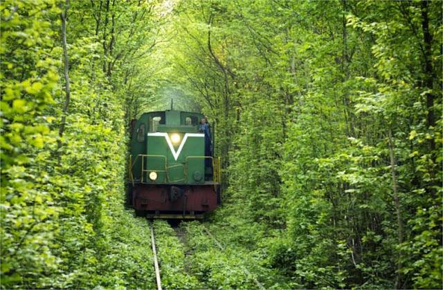 Túnel del Amor en Kleven, Ucrania