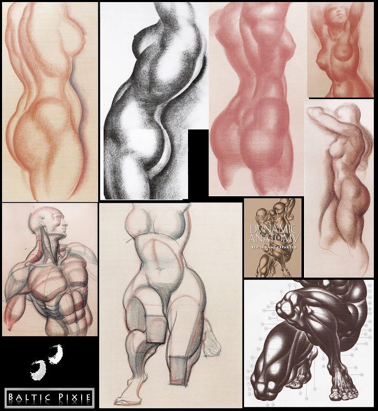 Drawing Reference Books His Books Figure Drawing