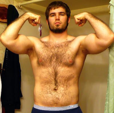 gaybear com br blog 100 % gratis blog direcionado para
