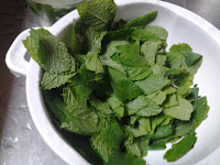 Washing mint leaves.
